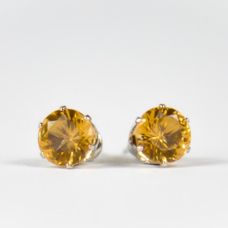 Golden Gem Stud Earings